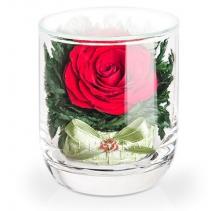 """Красная розочка в стакане s-top """"бантик"""" 40-474"""