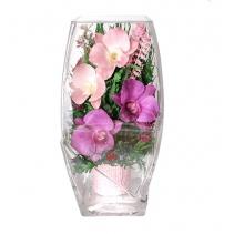 Орхидеи в прямоугольной вазе 42-997