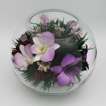 Орхидеи в круглой вазе 15см 42-690