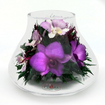 Орхидеи в вазе-бутоне 42-706