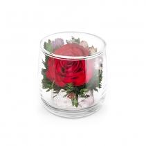 Красная роза в стаканчике Лира 46-551
