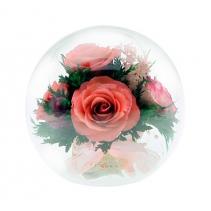 Розовые розы с круглом шаре со скосом 48-531