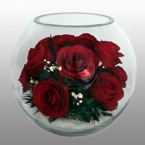 Розы BLR