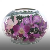 Композиция из орхидей CaMO