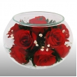 Розы CaSR