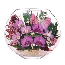 Композиция из орхидей орхидея EMO