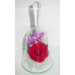 Колокольчик Красная роза ObSR