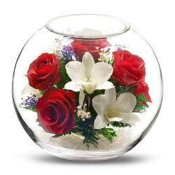 Микс из красных роз и белых орхидей BNM3
