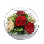 Яркие розы в шаре BNR5с3