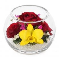 Розы и орхидеи в шаре BSM3
