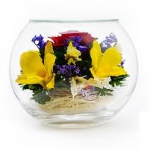 Розы и орхидеи в шаре BSM4