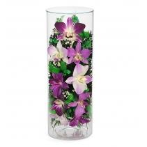 Пышные орхидеи cjo-01