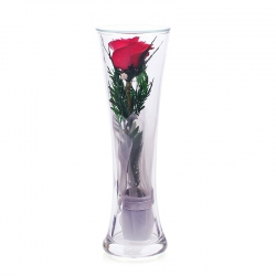 одна роза в стекле CuHR2
