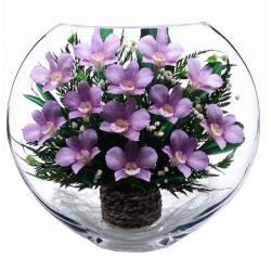 композиция из  орхидей в крупной вазе ELO-1