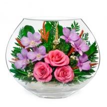 розы и орхидеи EMM-03