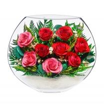 разноцветные розы EMR5c-01