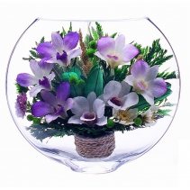 Композиция из разноцветных орхидей ESO-07