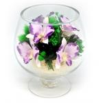 Орхидеи в бокале GLO1