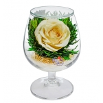 Композиция из кремово-белой розы GSRc