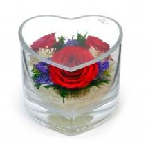 Яркие розы в сердце HMR