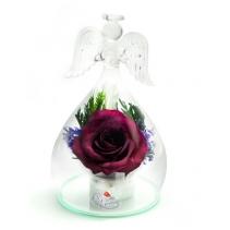 Ангел с розой OASRd