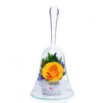 Колокольчик Свежая роза ObSRy