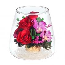 Орхидеи и розы POMM2