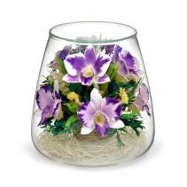 Разноцветие из орхидей POMO