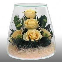 крем-розы POMRc