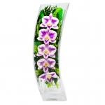 Композиция с орхидеями, ваза Дуга SQCO2