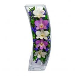 Композиция с орхидеями, ваза Дуга SQCO3