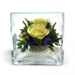 Композиция в кубе с орхидеями и крем-розами SQMM1